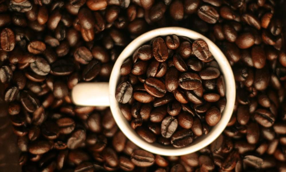 Kaffee direkt von der Plantage - Reisen im Garten Eden