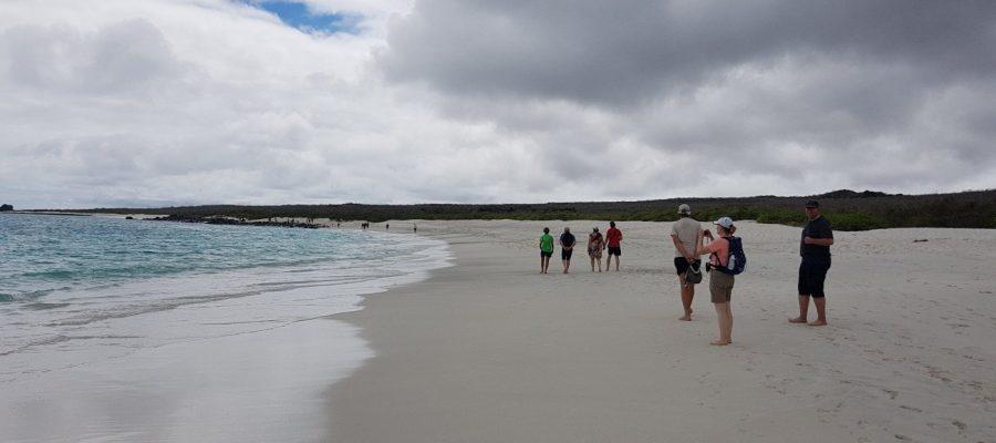 In der Kleingruppe an menschenleeren Stränden entlang - Ecuador- und Galapagos Gruppenreise