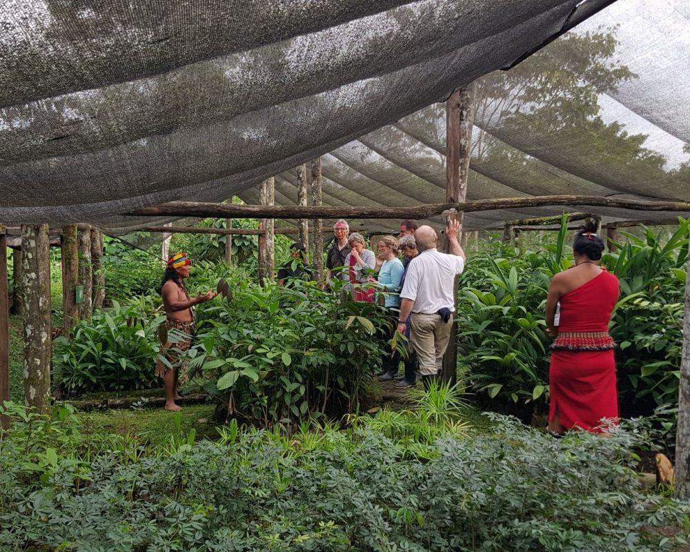 Entdecken Sie die Tier- & Pflanzenvielfalt während einer Ecuador-Galapagos-Gruppenreise
