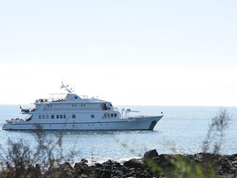 Galapagos-Kreuzfahrt - Die Coral I