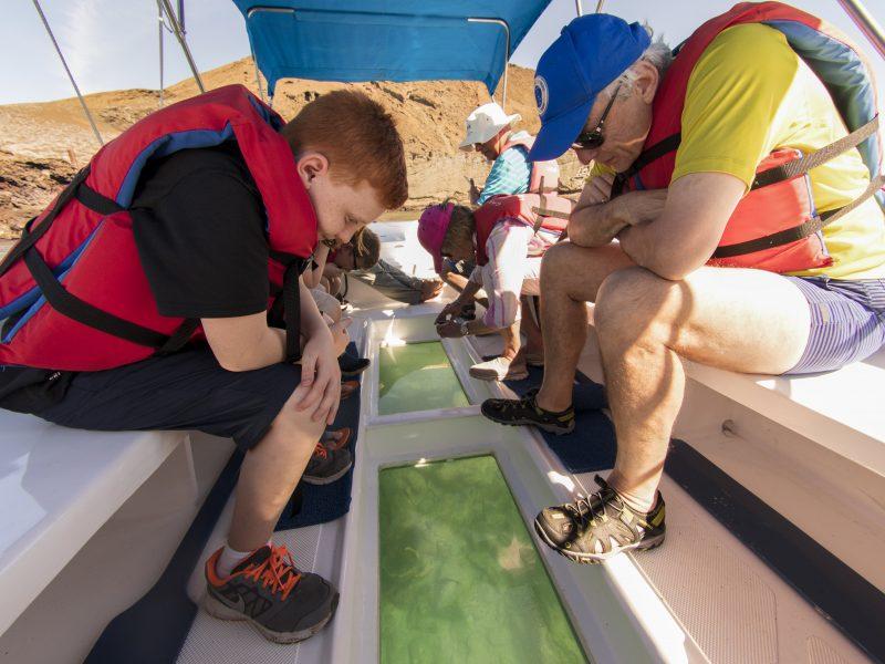 Galapagos-Kreuzfahrt - Machen Sie tolle Entdeckungen während einer Fahrt im Glasbodenboot