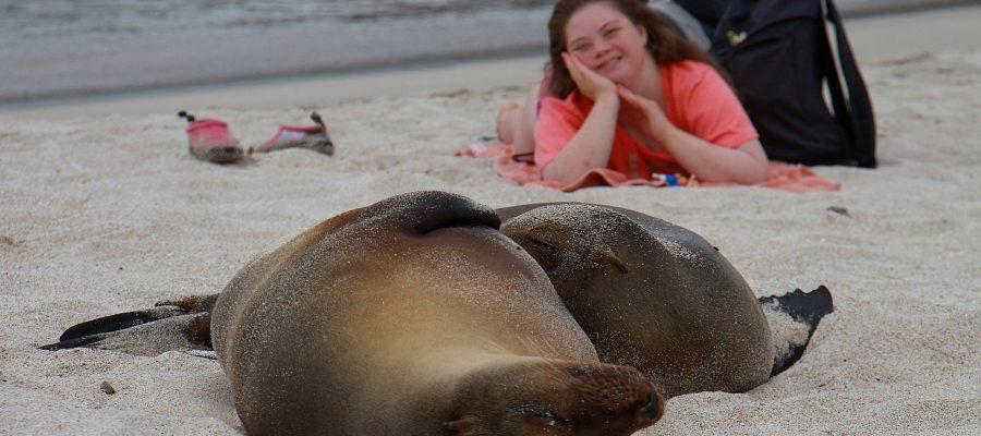 Zusammen mit Galapagos Seelöwen am Strand entspannen