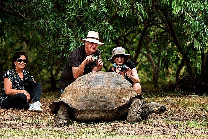 Galapagos Giant Tortoise with Tourist on Santa Cruz Island - Best Galapagos Tours