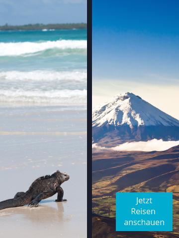 Entdecken Sie Vulkane und die traumhaften Galapagos-Inseln