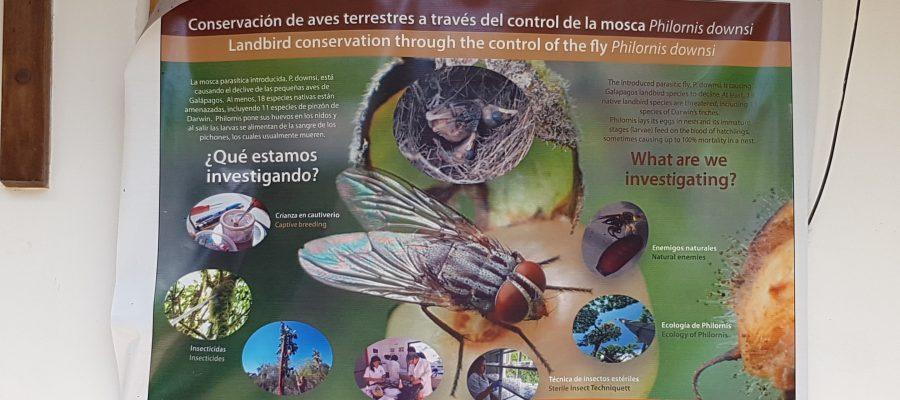 Charles Darwin Station auf Galapagos - Plakat einer der vielen Projekte der Station