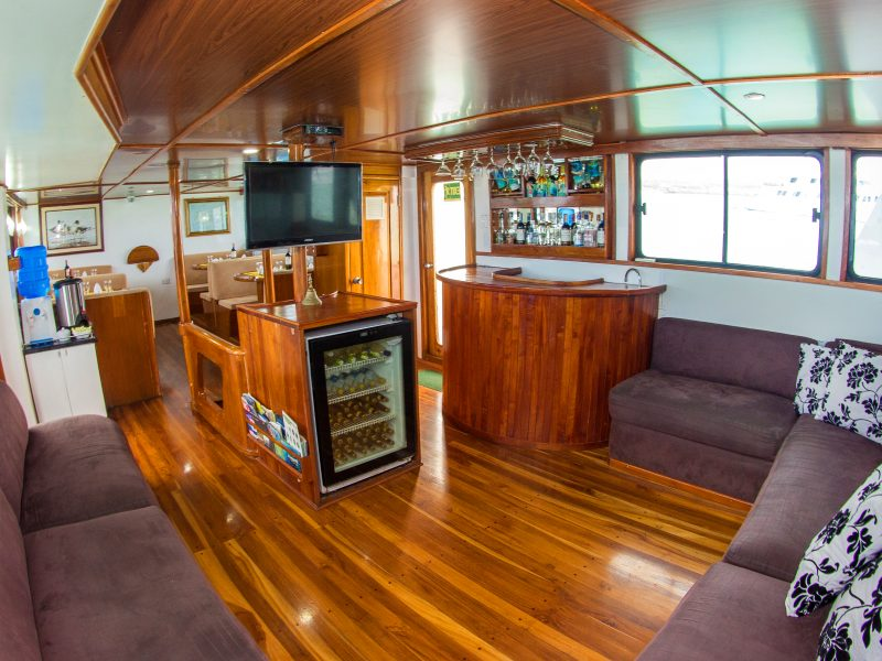 Galapagos-Kreuzfahrt Aqua - die Lounge und Bar auf dem Hauptdeck