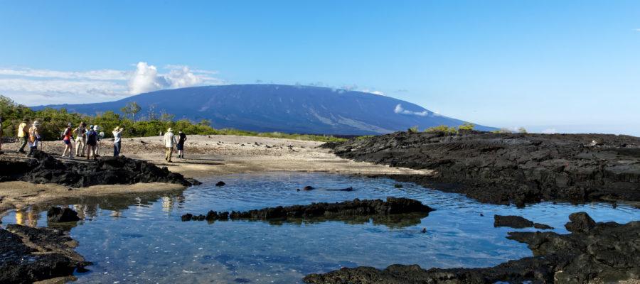 Südamerika, Ecuador, Galapagos Inseln, Insel Fernandina, Vulkan mit Lagune// South America, Ecuador, Galapagos Islands, Fernandina Island, Vulcano, lagoon