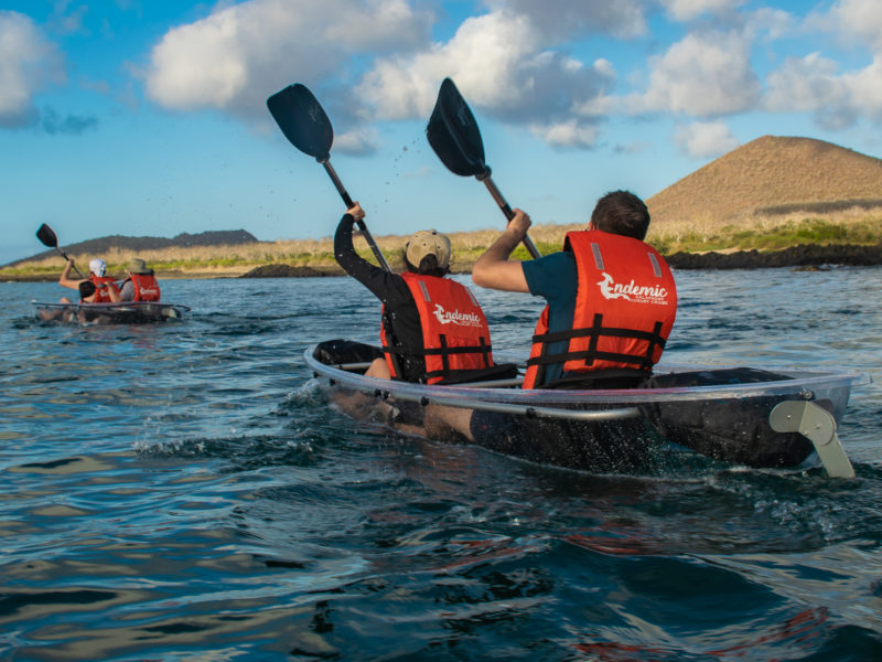 Galapagos-Kreuzfahrt Endemic Glassboden Kajaks