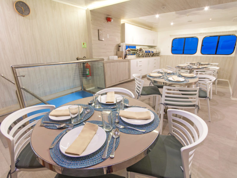Galapagos PRO Solaris dining room