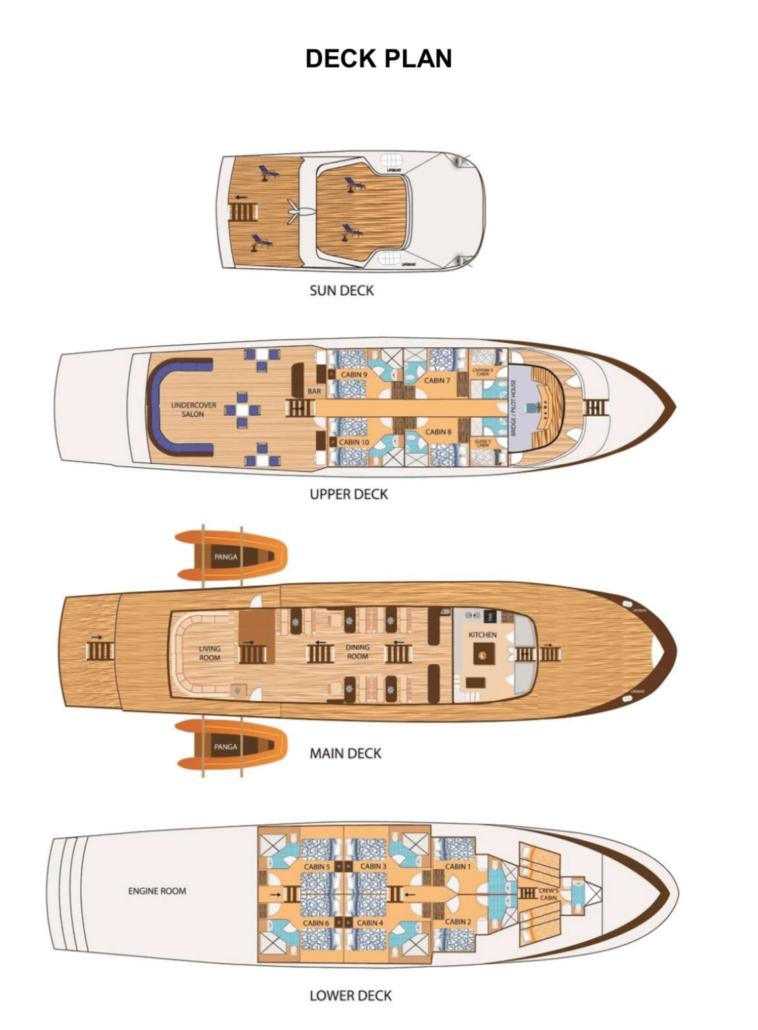 Neue Tauchsafari auf der Blue Spirit Deckplan mit Galapagos-Pro