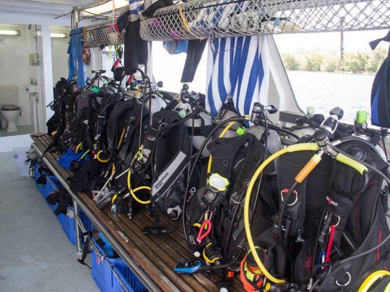 Dive Platform Galapagos Master